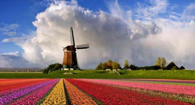Vācija-Beļģija-Holande-Keukenhofas ziedu parks-6.dienas