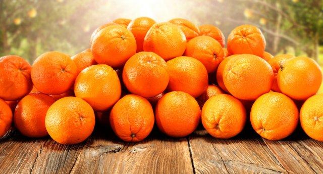 Apelsīnu kaujas Itālijā! Burgenlande, Vīna degustācija Austrijā – Bassano del Grappa – Novāra – Oropas klosteris – Turīna – Ivreja – Komo – Memmingena - Drēzdene