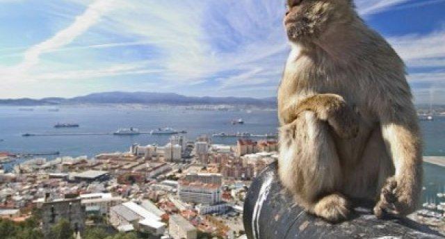 Spānija – Portugāle – Gibraltāra šaurums – Maroka. Baireitas Ermitāža – Putnu parks – Barselona – Valensija – Kosta del Sol – Malaga – Tarifa – Kosta de la Luz – Tanžera – Gibraltāra šaurums – Faro – Praia de Faro – Madride – Sansebastjana – Kolmāra