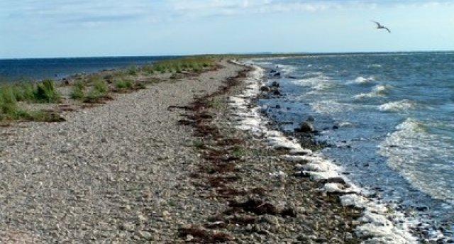 Igaunijas mežonīgi skarbais skaistums - Hījumā sala...