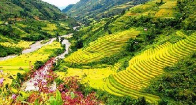 Vjetnama ar uzkāpšanu Phansipan kalnā